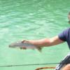 Episode 2: Whitetail Lake, BC – Don, Dale, and Ashley